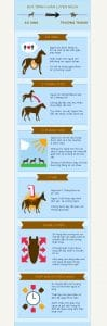quán trình huấn luyện ngựa