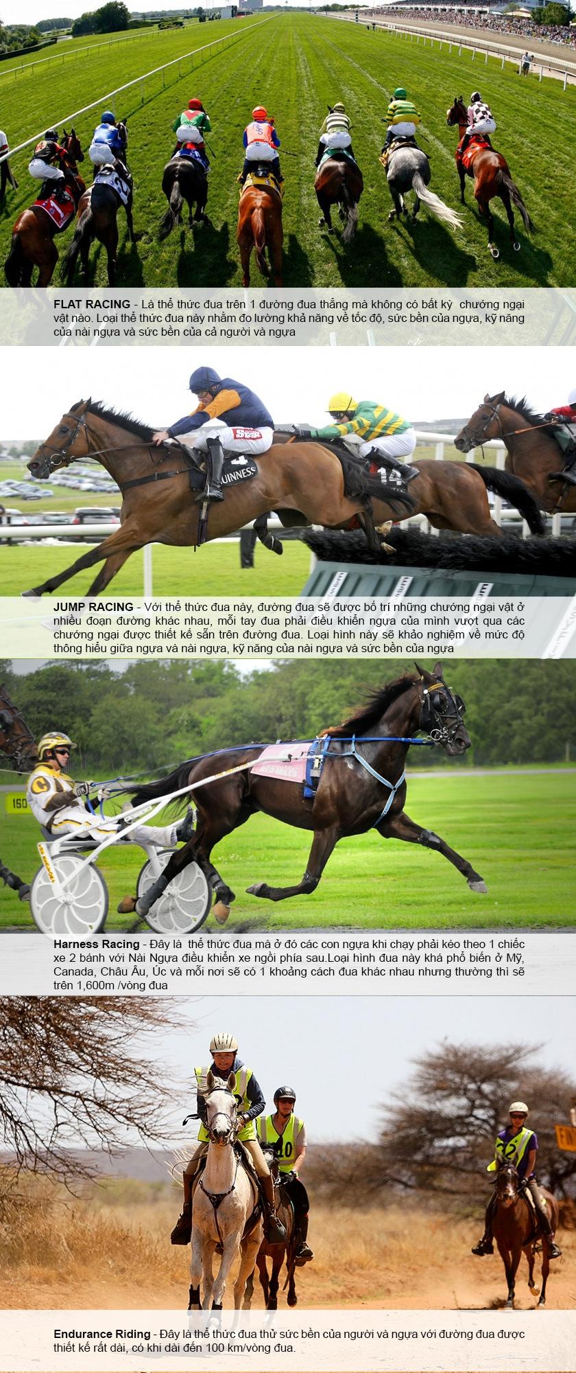 Đua ngựa nghệ thuật vượt chướng ngại vật