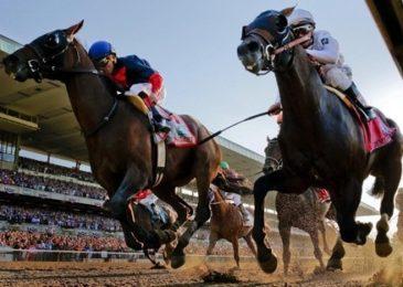 Tổng quan về đua ngựa