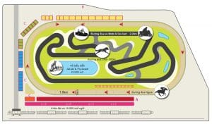 Hình ảnh chung về thiết kế có bản của trường đua chó