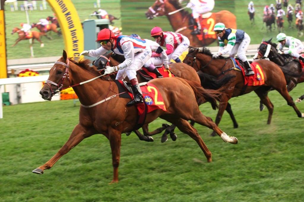 Cuộc đua tại trường đua ngựa Shatin