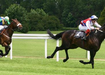 Thú vị giải đua ngựa Bắc Hà
