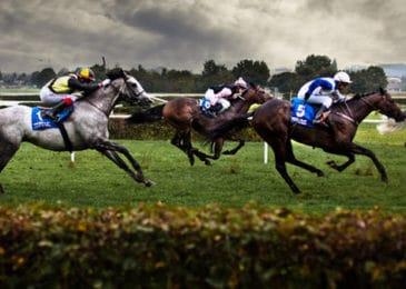 Cuộc đầu tư triệu đô quanh trường đua ngựa Hà Nội