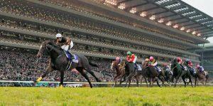 Top 10 trường đua ngựa nhật bản bạn nên chọn để cá cược