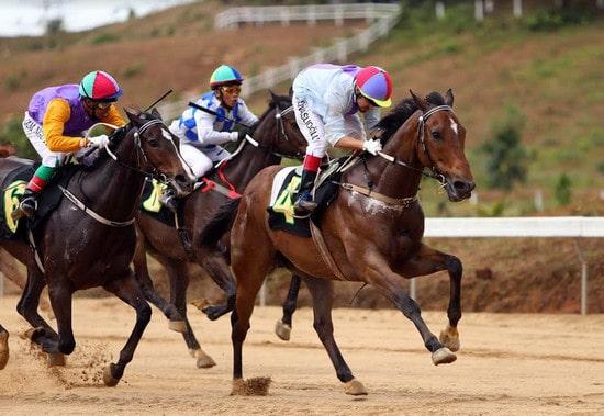 Triều Tiên cho các cược đua ngựa để thu hút khách nhà giàu ...