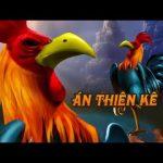 Xám thần, Mơ thần, Kê thần – 3 gà chọi bạc tỷ vùng đất bắc