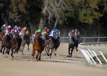 Top 10 trường đua ngựa nổi tiếng nhất thế giới